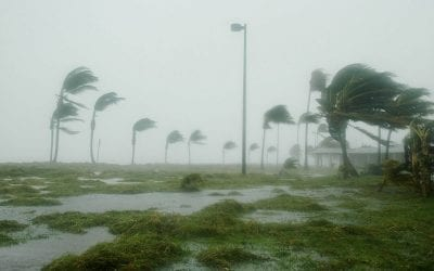 Wind Mitigation Inspections in Florida