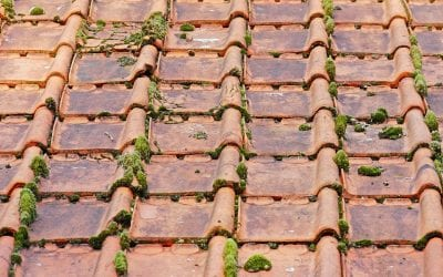 Top 7 Signs You Need to Replace Your Roof