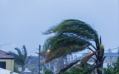 6 Ways To Prevent Wind Damage to Your Home