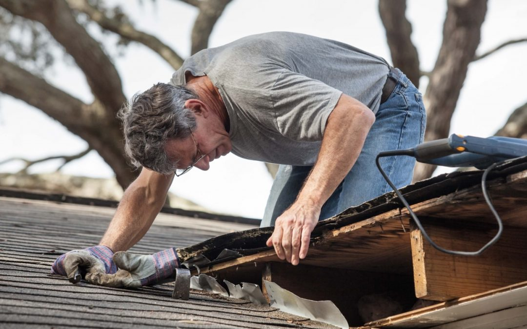 Inspecting the roof is one of the necessary home maintenance tasks