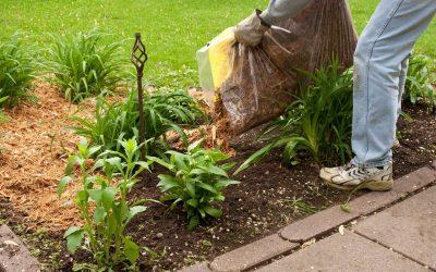 Spring Home Improvement Ideas